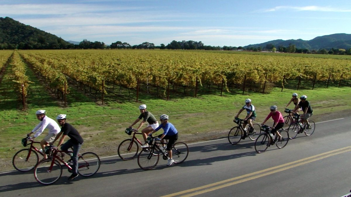 Napa Valley Bike Tours unique experiences