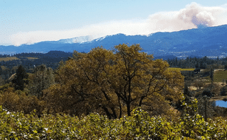 wildfires in Napa, but we're still open for business