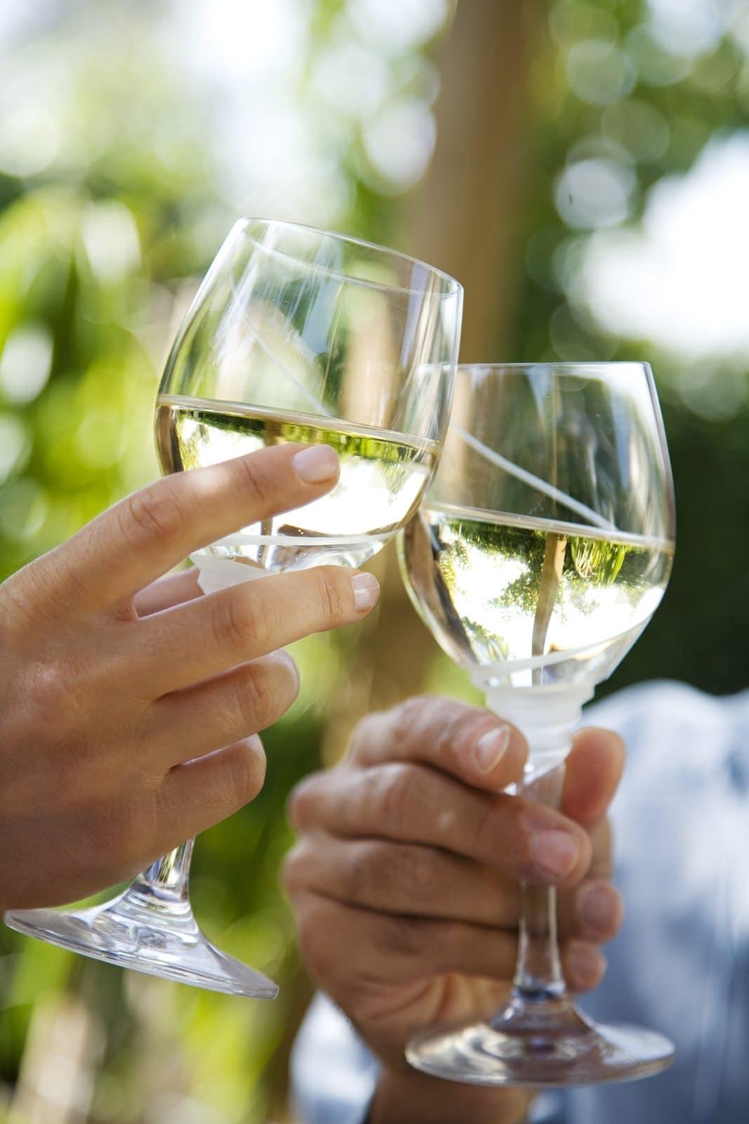 Los Carneros Wine Region in Napa and sonoma
