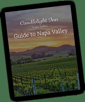 Napa Guide Download 1