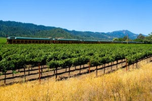 Murder Mystery aboard the Napa Valley Wine Train