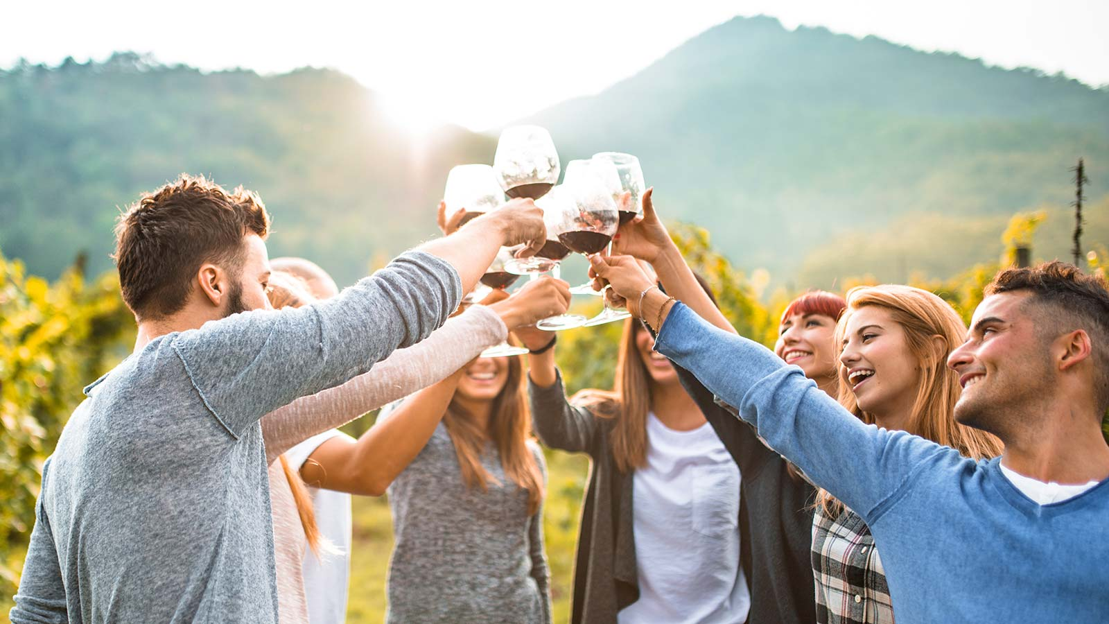 Take These Napa Valley Wine Tours This Winter