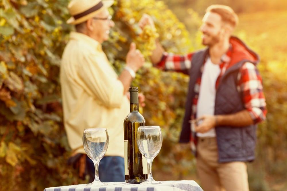 Wine tasting in Napa Valley 2021