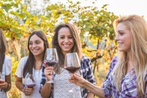 Los Carneros Wine Region